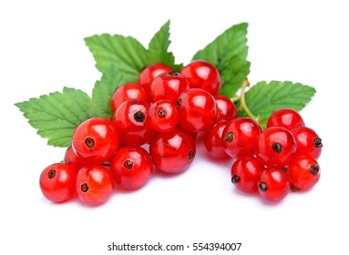 Red currant close up isolated on white.