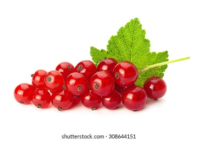 Red currant with leaf isolated on white