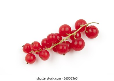 Red currant, Ribes Rubrum, isolated on white background