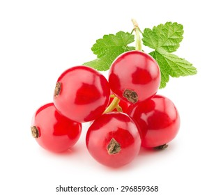 red currants isolated on the white background