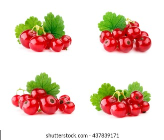 Red currants with leaf isolated on white. Set.