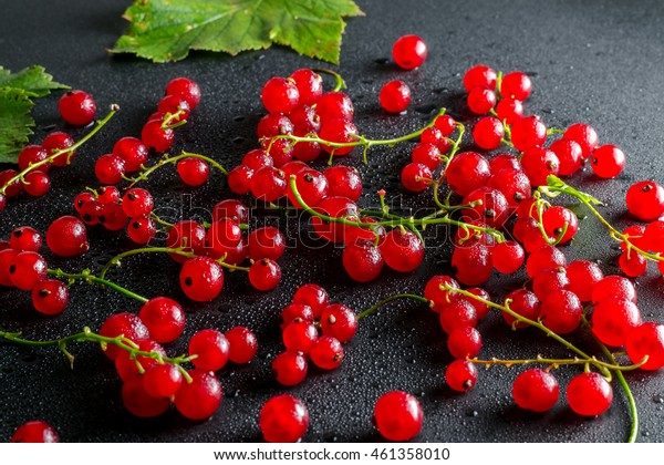 Red Currants On A Black Background With Leaves. Top View.