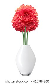 Red Dahlia Autumn flower in vase isolated on white background