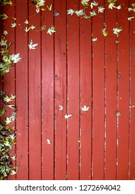 Red deck planks with scattered autumn leaves