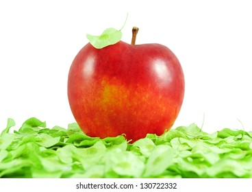 Red delicious apple lying on the green leaves and leaf on the top on a white background