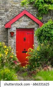 Red door and overgrown flower garden.
