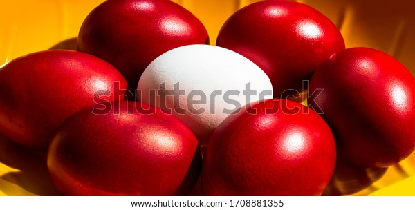 Red dyed eggs on a circle, with one white egg in the middle. Red Easter eggs. Close up