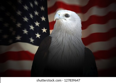 RED Eagle set against the red, white and blue American flag.