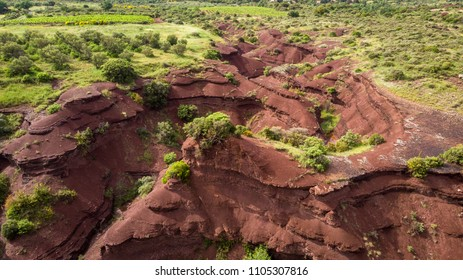 a red earth canyon bordered by olive groves