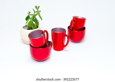 red empty cups of coffee and crassula ovata or jade plant in flowerpot on white background