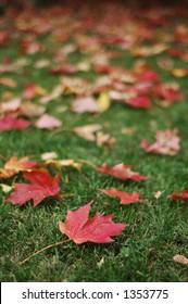Red Fall Leaves on Green Grass (focus on foreground leaf, vertical orientation)