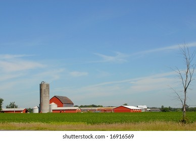 red Farm with Silo, Summer