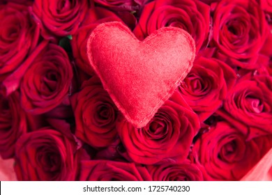 Red felt heart against red roses,  Valentines concept