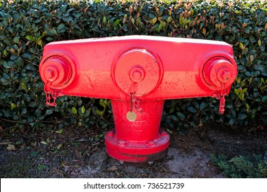 A red fire hydrant, an unusual shape