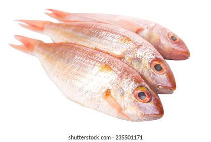 Red fish over white background