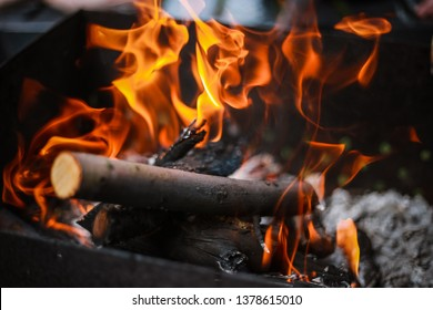Red flame from a cut of a tree, dark gray coals inside a metal brazier. Firewood burning in a brazier on a bright yellow flame. Flames of fire preparing for cooking kebabs. Charcoal brazier coal
