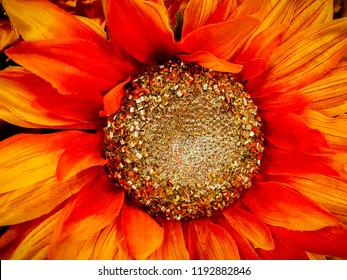 Red Flower Display
