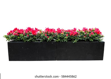 red flower pot isolated with clipping path