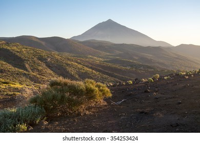 Red flower with sky in the Teide National Park, Canary Island