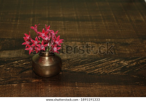 Red flower in Tiny metal Vase. Perfect background for seasons greetings. Macro of tiny vase and flower.