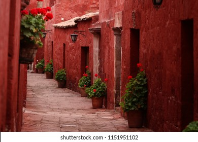 Red flowers in a red street in Arequipa's Monastery, in Peru.