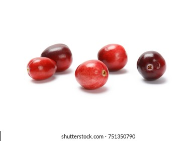 Red fresh raw cranberry isolated on white background. produce at bc canada