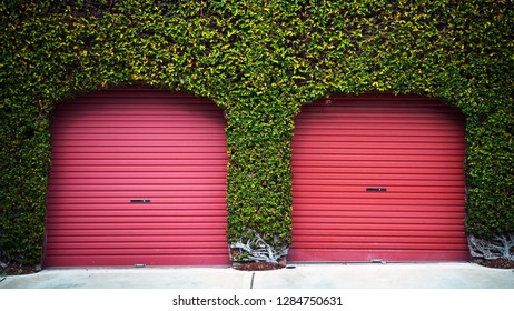 red garage doors covered green flowers