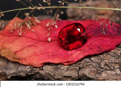 Red gem . Top RUBY on nature