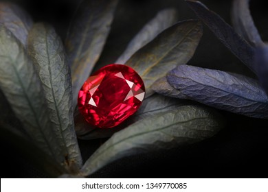 Red Gemstone Beauty Shot