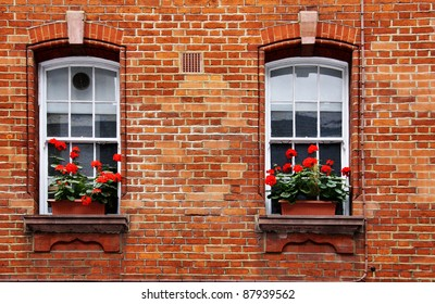 Red Geranium Window Box