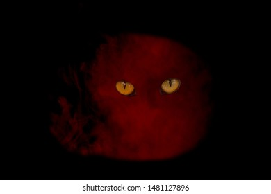 red ghost thick cloud of cigarette vapor with orange eyes supernatural concept on a dark background object for halloween