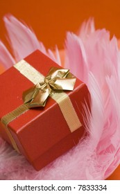 red gift box on pink feather