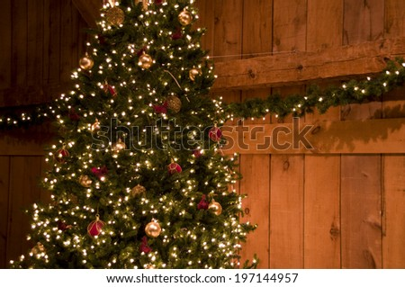 Newman Christmas Trees.Red Gold Decorated Christmas Tree By Stock Photo Edit Now