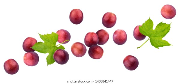 Red grape isolated on white background with clipping path