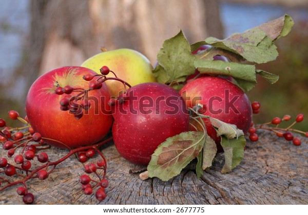 Red and green apples arranged on a tree stump.