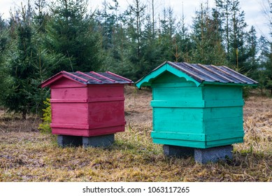 red and green beehives