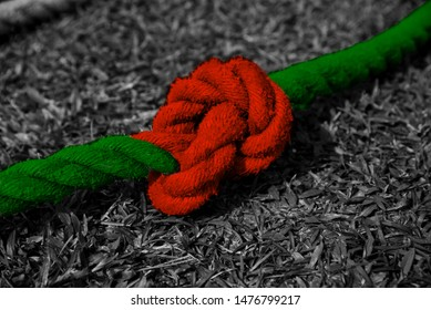 Red and green colours painted on a nylon ropes