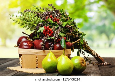 Red and green fresh pears in a wooden basket with a fragrant bouquet on a dark wooden table in the background of the garden