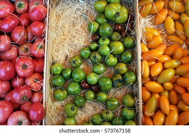 Red, Green and Yellow Tomatoes