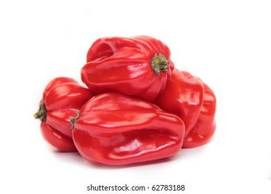 Red habanero on white background