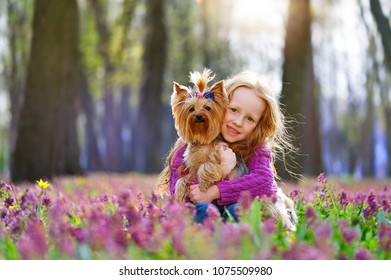 Red haired girl hugging her yorkshire terrier puppy at the blooming meadow