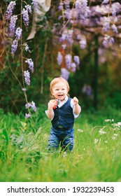Red haired toddler is standing on a green grass with a wysteria tree in the background