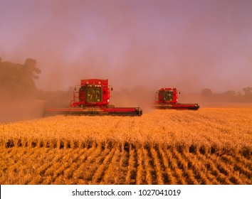 Red Harvesters, summer time is harvesting time in Central West NSW. Australia where tonnes of wheat is harvested foe export.