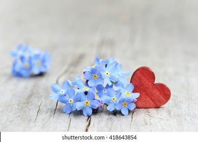 Red heart and blue flowers for love. Valentines day background on old wood, with copy space.