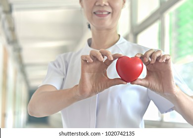 Red Heart in Nurses Hands. Good Health Support and Business Hospital's Private Service Concept.