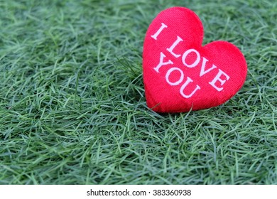 Red heart on grass background