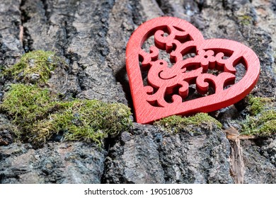 red heart with a pattern on the bark of a tree with moss, close-up
