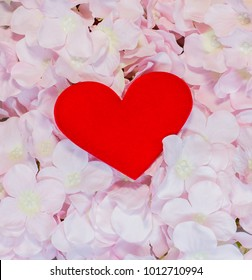 Red heart with pink flower, love valentine day