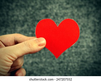Red Heart Shape in the Hand on the Gray Background