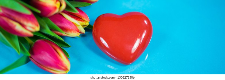 red heart and tulips on blue background, banner